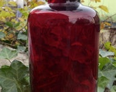Ruby Red Silver Crest Art Glass Vase