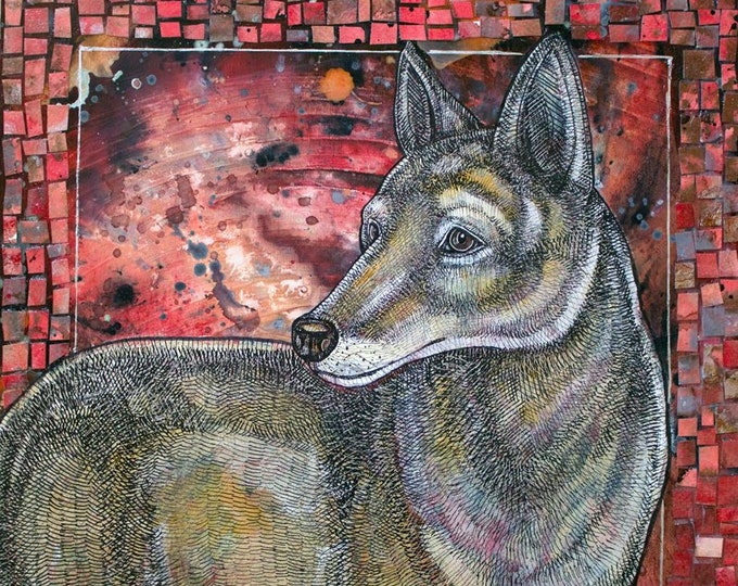 Coyote Sunset Animal Art Print by Lynnette Shelley