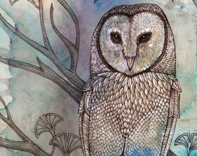 """Mystical Barn Owl Bird Art Print by Lynnette Shelley (8x10"""")"""