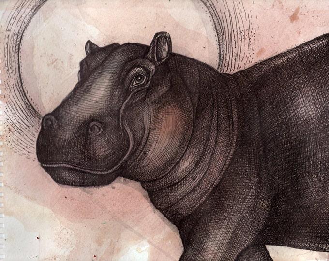 Hippo Animal Archival Art Giclee Print by Lynnette Shelley