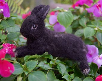 Needle Felted Bunny Rabbit Pet Portrait Custom