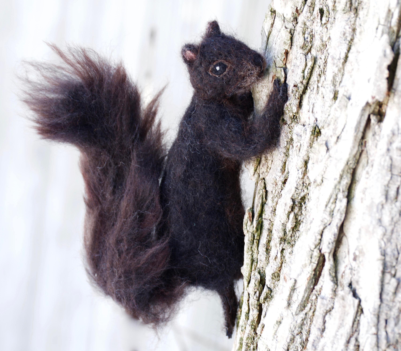 Nadel gefilzt Eichhörnchen schwarz bewegliche realistisch   Etsy