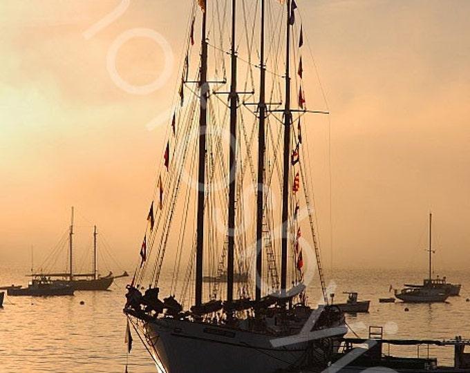Bar Harbor Boat - 8x12 signed and numbered original photograph - schooner sailboat