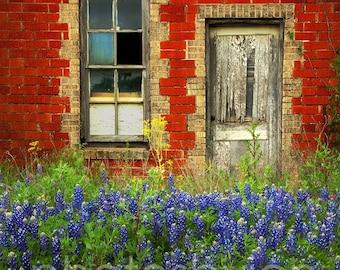 Beauty and The Door- 11 x 15 signed original photograph - Texas Wild Flowers Landscape, Award Winner