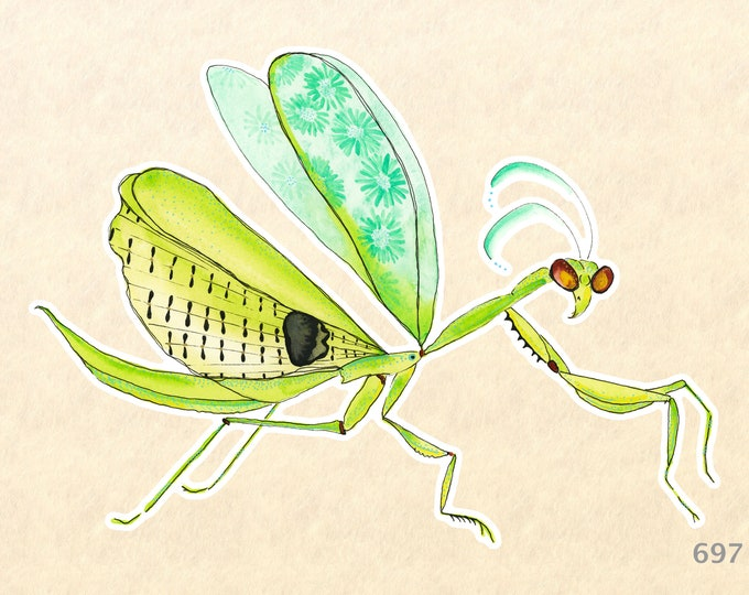 Praying Mantis Sticker, Garden Stickers, Gardening Stickers, Bug Stickers, Decorative Sticker, Insect Sticker, Water Bottle Sticker