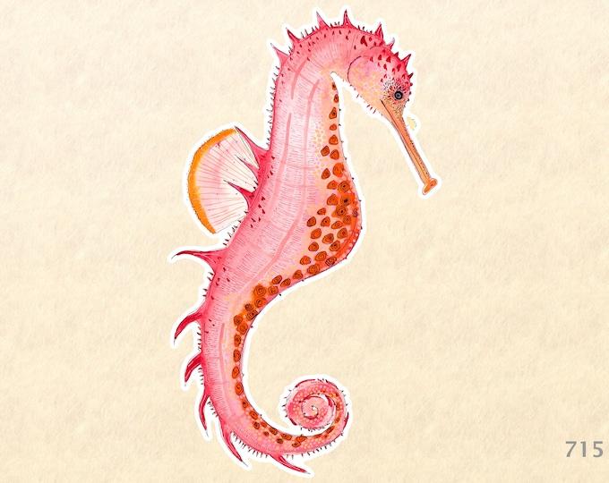 Sea Horse Sticker Sea Life Sticker Beach Sticker Nautical Sticker Laptop Sticker Water Bottle Sticker Decorative Sticker Red Orange