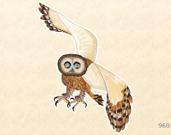 Brown Wood Owl Sticker Bird Sticker Wildlife Sticker Wild Bird Sticker Water Bottle Sticker Scrapbook Sticker Macbook Pro  iPhone Decal