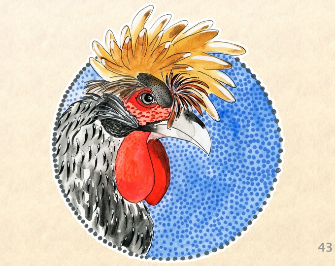 Rooster Stickers, Chicken Stickers, Farm Stickers, Animal Stickers, Bird Stickers, Water Bottle Stickers,  Scrapbook Stickers, Macbook Decal