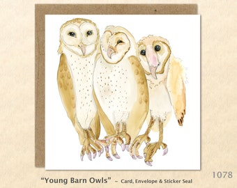 Three Young Barn Owls Note Card Bird Card Watercolor Art Card Customizable Blank Note Card Art Card Greeting Card