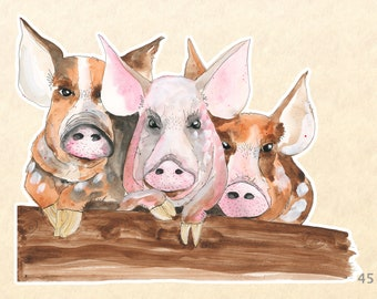 Three Pigs Sticker Farm Animal Sticker Cute Animal Sticker Fun Animal Sticker Water Bottle, Scrapbook Stickers, Macbook Decal Watercolor Art