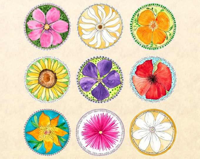 9 Flower Sticker Set, Floral Stickers, Flower Stickers, Garden Stickers, Poppies, Lilies, Daisies, Decorative Stickers, Scrapbook Stickers