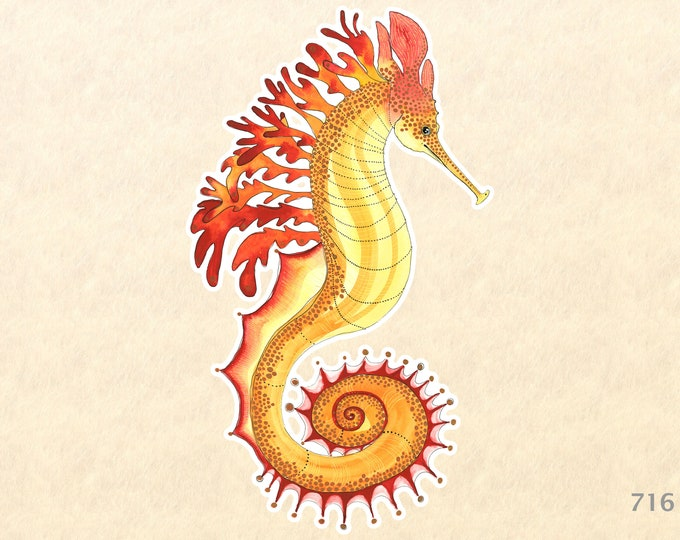 Sea Horse Sticker Sea Life Sticker Beach Sticker Nautical Sticker Laptop Sticker Water Bottle Sticker Decorative Sticker Red Yellow