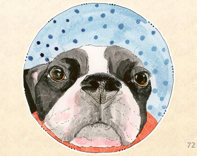 Boston Terrier Sticker Dog Sticker Cute Dog Sticker Fun Dog Sticker Laptop Sticker Water Bottle Sticker Scrapbook Sticker Macbook Decal