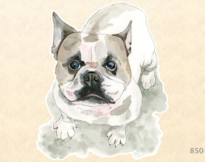 Bulldog Sticker Fun Animal Stickers Laptop Stickers Water Bottle Scrapbook Stickers Macbook Decal Watercolor Art Sticker