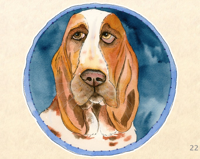 Dog Sticker Basset Hound Sticker Hound Dog Sticker Laptop Sticker Water Bottle Sticker Scrapbooking Sticker