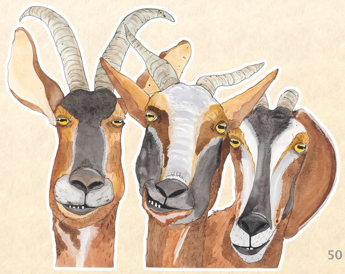 Three Goats Sticker Fun Animal Stickers Farm Animal Stickers Laptop Stickers Water Bottle Scrapbooking Stickers Macbook Decal Watercolor