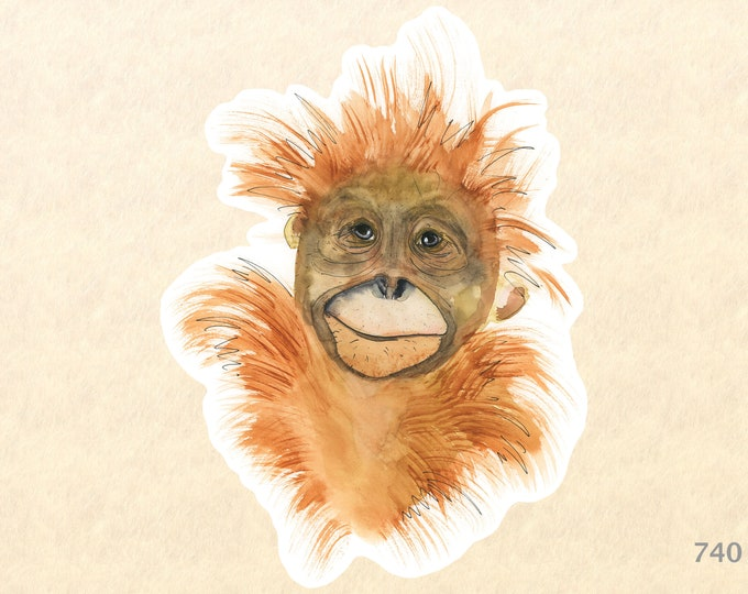 Baby Orangutan Sticker Cute Animal Sticker African Animal Sticker Animal Baby Sticker Wildlife Sticker Scrapbook Sticker