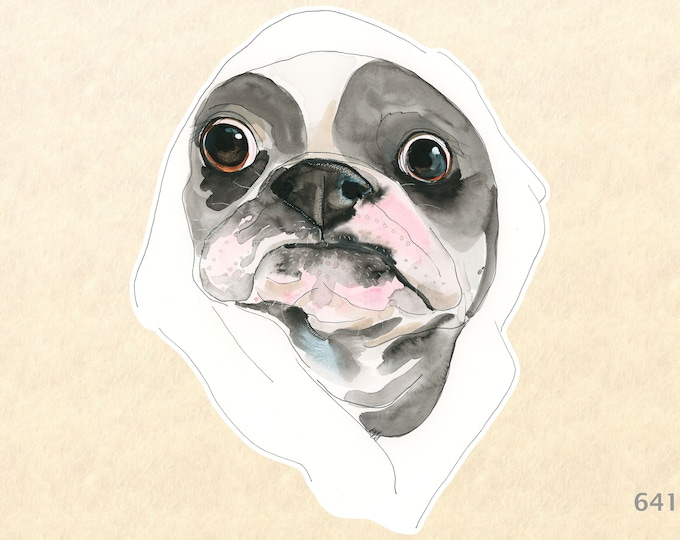 Dog Stickers, Boston Terrier Stickers, Cute Animal Stickers, Fun Animal Stickers, Water Bottle Stickers, Scrapbook Stickers