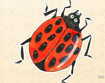 Ladybug Stickers, Garden Stickers, Decorative Stickers, Insect Stickers, Water Bottle Sticker, Scrapbooking Sticker, Macbook Decal