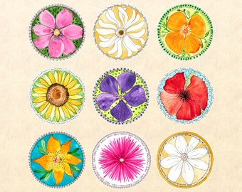 Flower Sticker Set  9 Watercolor Floral Stickers  Garden Stickers Cosmos Daisy California Poppy Sunflower Periwinkle Lily Aster Clematis