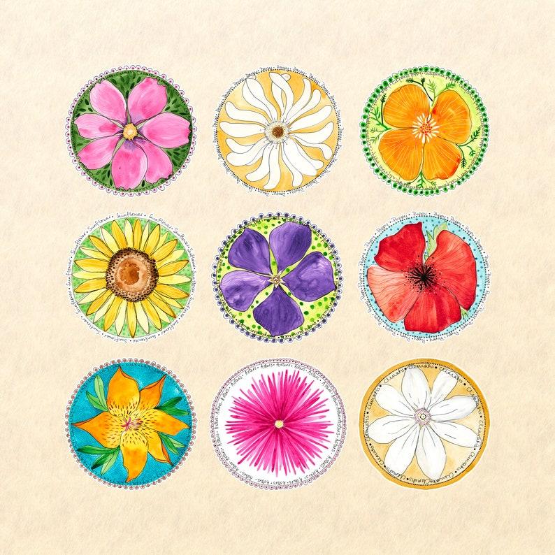 9 Flower Sticker Set Floral Stickers Flower Stickers Garden image 0