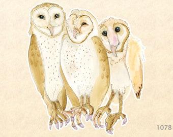 Barn Owls Sticker Bird Sticker Water Color Art Sticker