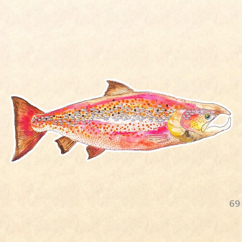 Fish Stickers Salmon Stickers Sea Life Stickers Laptop image 0