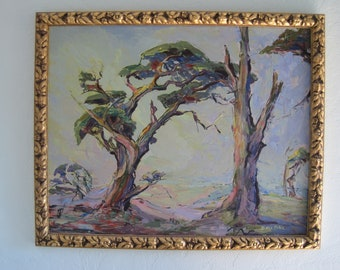 Original Oil Painting Monterey Cypress Carmel California Early California Plein Air Artist Doris Rohr 1940's 16x20