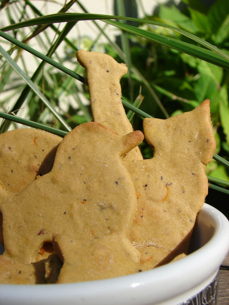TRUEblueTREATS   Grain Free Blueberry Treats for Dogs  All image 0