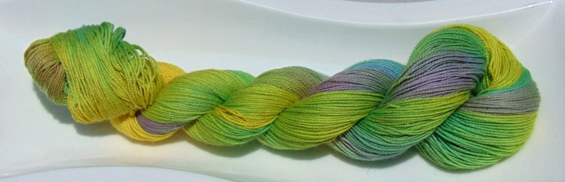 Cactus Blooms Hand Dyed Lace Weight Variegated Yarn 100 Organic Cotton