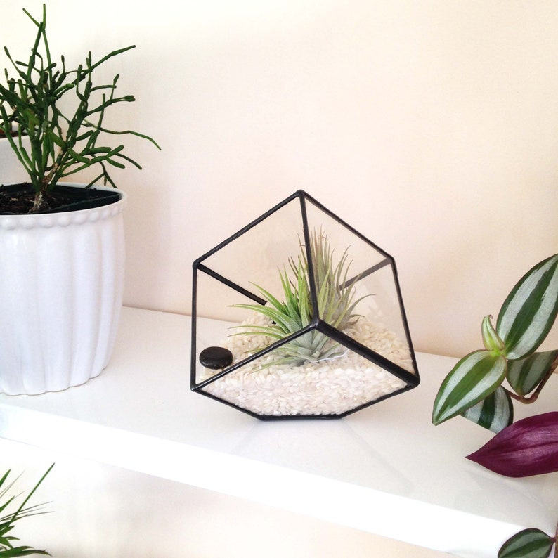 Cube Small Geometric Glass Terrarium Handmade Planter Etsy