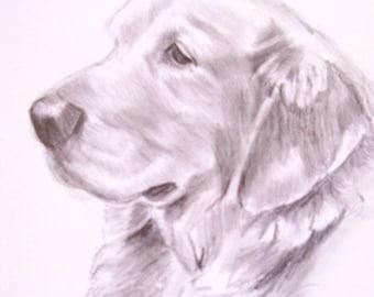 Dog Sketch Custom Drawing, 8x10