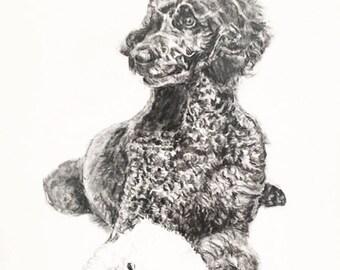 Dog Portrait Custom Sketch, 9x12