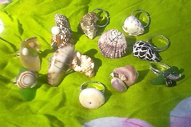 Hawaiian Seashell Ring Adjustable Ring Tropical Jewelry image 0