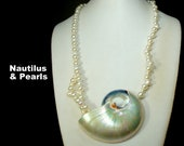 GORGEOUS Opalescent Nautilus SeaShell Pendant on White Luminescent Glass Pearl Bead Necklace