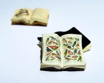 Miniature Open Book --- Birds