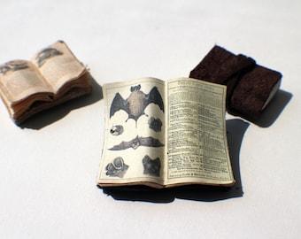 Miniature Open Book --- Bats
