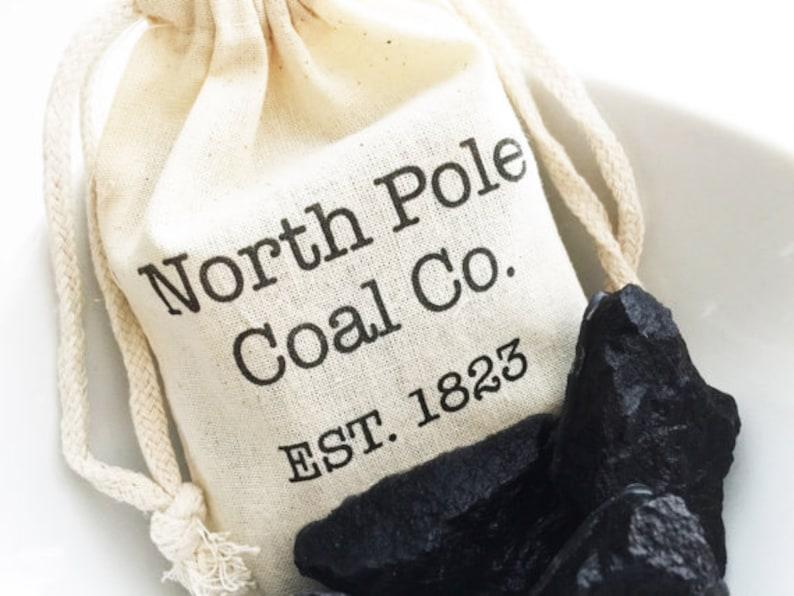 North Pole Coal Company Christmas Coal Gift Bags 4x6 Set of 10 christmas party favors secret santa gag gifts