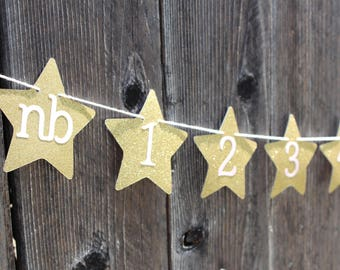 Pink and Gold Star Photo Banner - 1st Birthday Banner, First year photo banner
