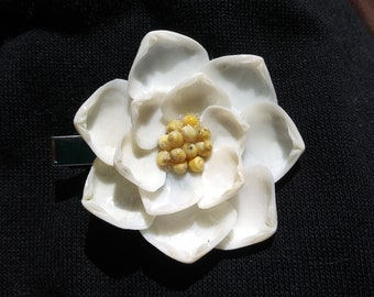 White with Yellow Shells: Large Shellblossom CLIP