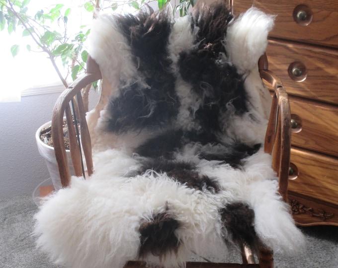 Sheepskin ~Jacob Sheep
