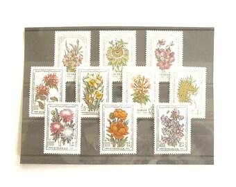 Syria Postage Stamp Sets - International Flower Show series, 1980-1981