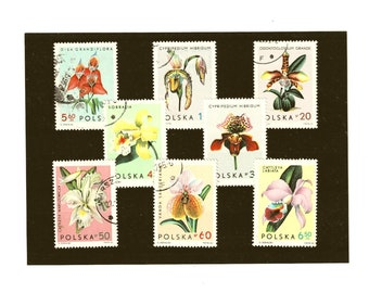 Pastel Orchid Postage Stamp Set - Poland, 1965
