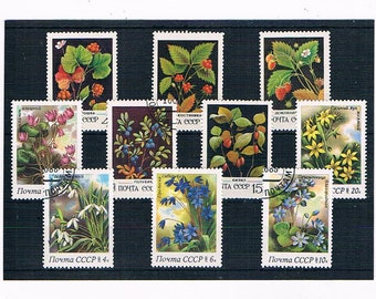 Berries & WildFlowers Postage Stamps - Russia 1982, 1983