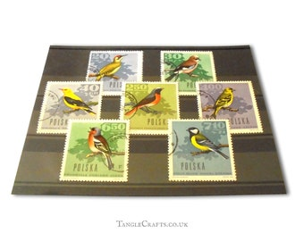 Retro Forest Bird Postage Stamps - Part Set Poland 1966
