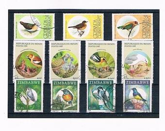 Garden Bird Stamps with Young from Benin 1995, plus Grenada 1995 & Zimbabwe 1998