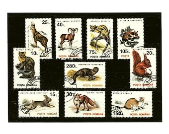 Retro Woodland Wildlife Stamp Collection - Romania 1993 Set