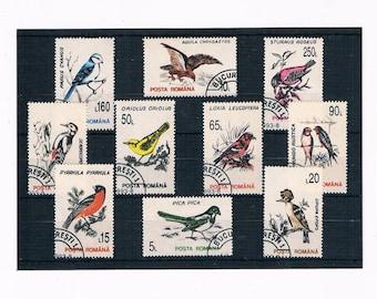 Retro Garden Bird Stamp Collection - Romania 1993 Set