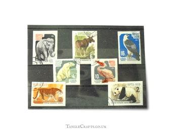 Zoo Animals Vintage Postage Stamp Set - Soviet Union 1964