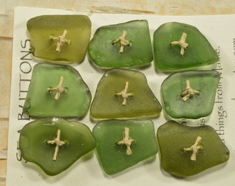 Forest  a set of nine square authentic Maine sea / beach glass buttons